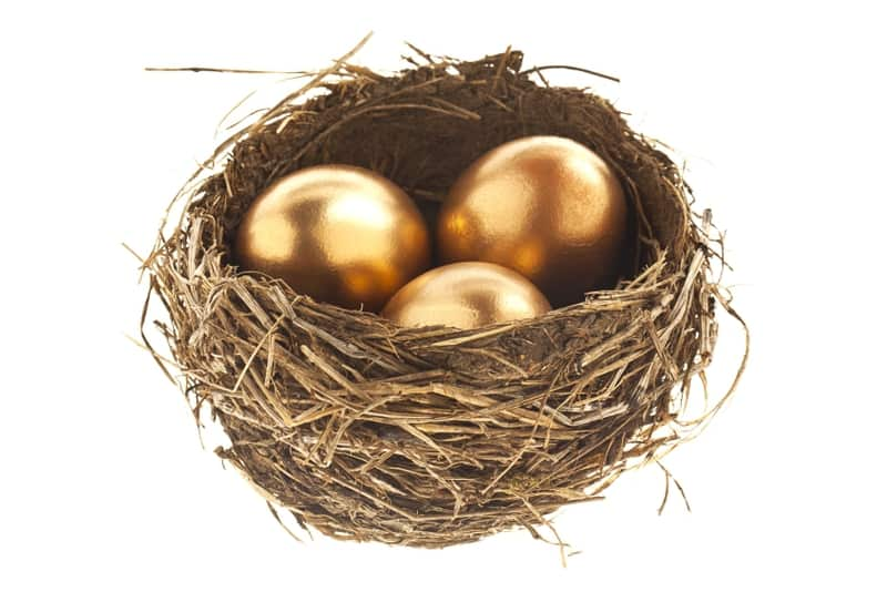 gold egg nest | wealth management tips