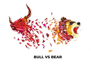 Bull Vs Bear | How to Evaluate Alternative Investments