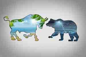 bulls vs bears   how to avoid investing mistakes