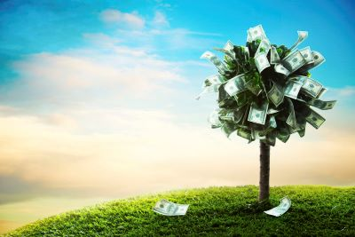money tree | 4% rule dividends